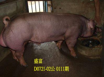 台灣動物科技研究所竹南檢定站10111期D0721-02拍賣相片