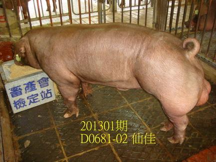 中央畜產會201301期D0681-02拍賣照片