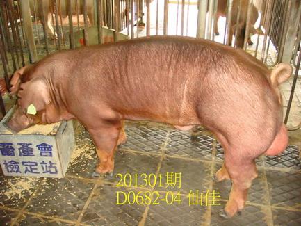 中央畜產會201301期D0682-04拍賣照片