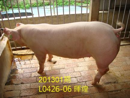中央畜產會201301期L0426-06拍賣照片