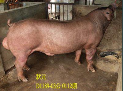 台灣動物科技研究所竹南檢定站10112期D1189-03拍賣相片