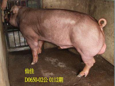 台灣動物科技研究所竹南檢定站10112期D0650-02拍賣相片