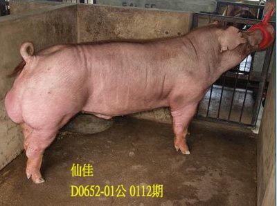 台灣動物科技研究所竹南檢定站10112期D0652-01拍賣相片