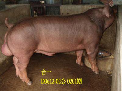 台灣動物科技研究所竹南檢定站10201期D0612-02拍賣相片