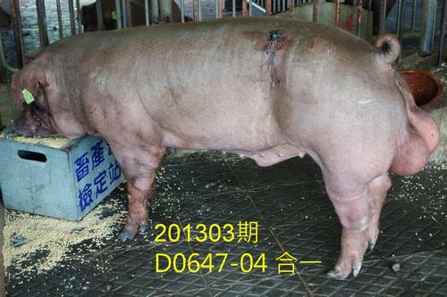 中央畜產會201303期D0647-04拍賣照片
