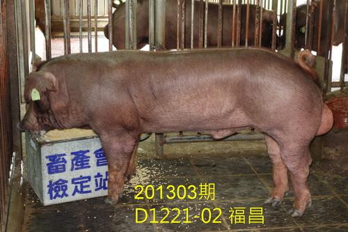 中央畜產會201303期D1221-02拍賣照片