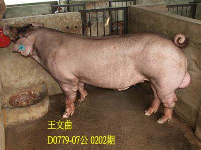 台灣動物科技研究所竹南檢定站10202期D0779-07拍賣相片