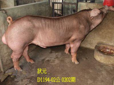 台灣動物科技研究所竹南檢定站10202期D1194-02拍賣相片
