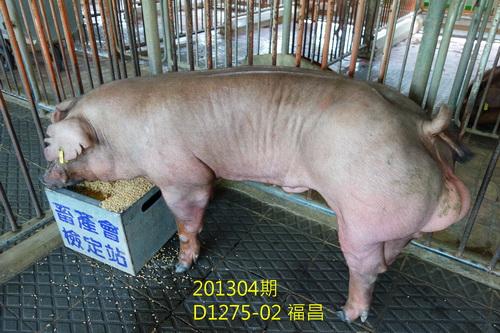 中央畜產會201304期D1275-02拍賣照片