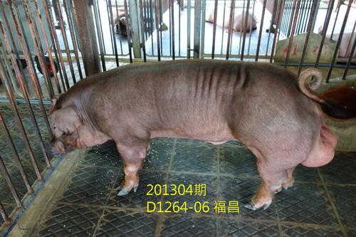 中央畜產會201304期D1264-06拍賣照片