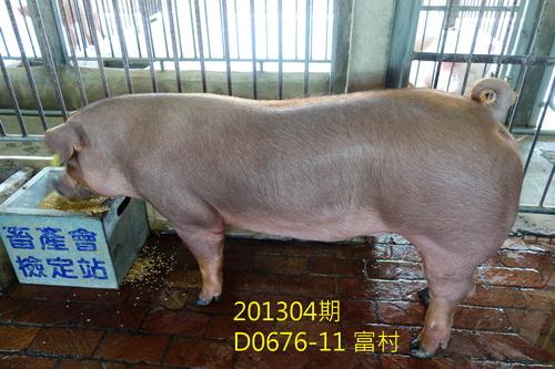 中央畜產會201304期D0676-11拍賣照片