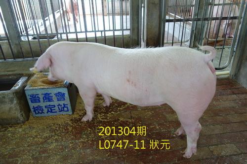 中央畜產會201304期L0747-11拍賣照片