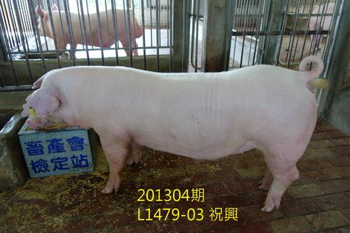 中央畜產會201304期L1479-03拍賣照片