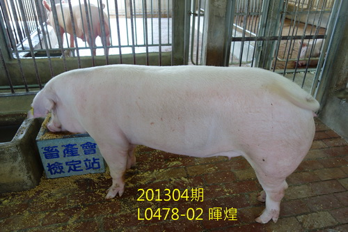 中央畜產會201304期L0478-02拍賣照片