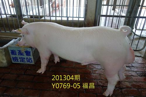 中央畜產會201304期Y0769-05拍賣照片