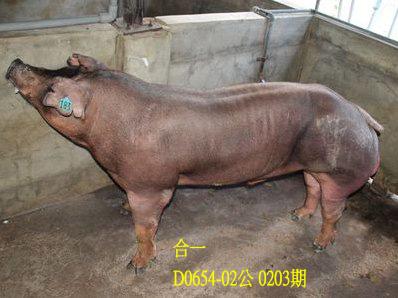 台灣動物科技研究所竹南檢定站10203期D0654-02拍賣相片