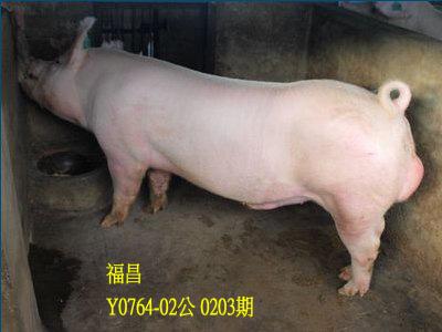台灣動物科技研究所竹南檢定站10203期Y0764-02拍賣相片