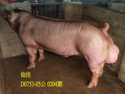 台灣動物科技研究所竹南檢定站10204期D0753-05拍賣相片