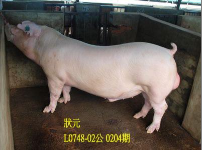 台灣動物科技研究所竹南檢定站10204期L0748-02拍賣相片