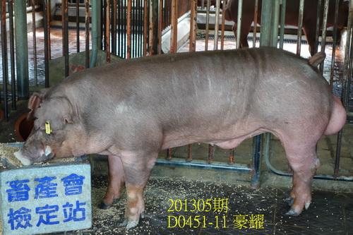 中央畜產會201305期D0451-11拍賣照片