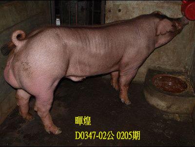 台灣動物科技研究所竹南檢定站10205期D0347-02拍賣相片
