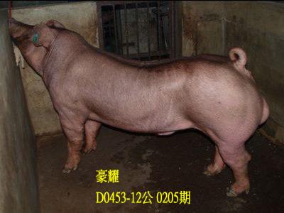 台灣動物科技研究所竹南檢定站10205期D0453-12拍賣相片