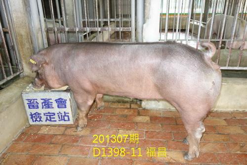 中央畜產會201307期D1398-11拍賣照片