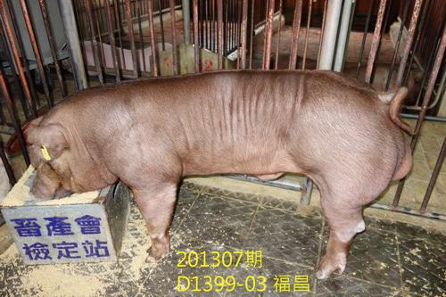 中央畜產會201307期D1399-03拍賣照片