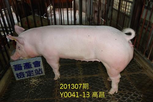 中央畜產會201307期Y0041-13拍賣照片