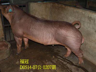 台灣動物科技研究所竹南檢定站10207期D0514-07拍賣相片
