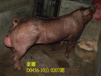 台灣動物科技研究所竹南檢定站10207期D0456-10拍賣相片