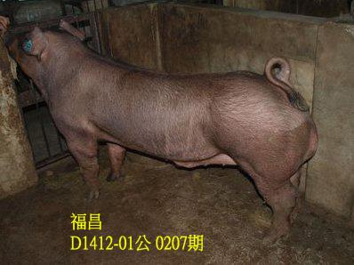 台灣動物科技研究所竹南檢定站10207期D1412-01拍賣相片
