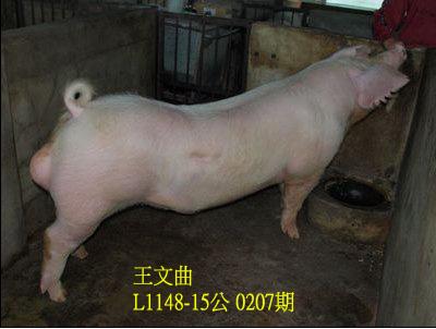 台灣動物科技研究所竹南檢定站10207期L1148-15拍賣相片