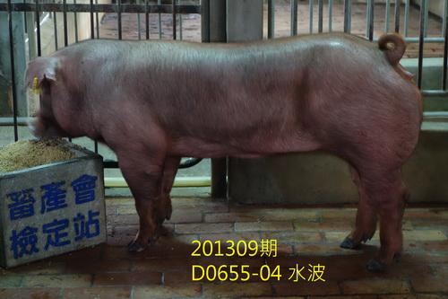 中央畜產會201309期D0655-04拍賣照片