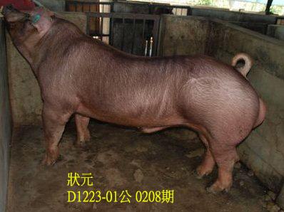 台灣動物科技研究所竹南檢定站10208期D1223-01拍賣相片