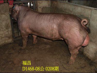 台灣動物科技研究所竹南檢定站10208期D1468-08拍賣相片