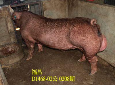 台灣動物科技研究所竹南檢定站10208期D1468-02拍賣相片