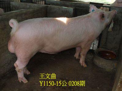 台灣動物科技研究所竹南檢定站10208期Y1150-15拍賣相片