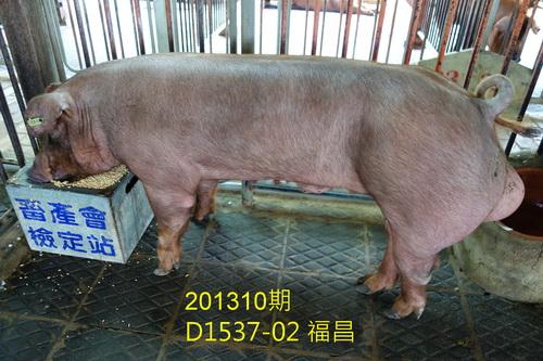 中央畜產會201310期D1537-02拍賣照片