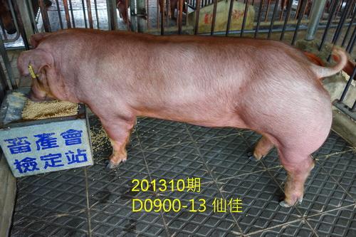 中央畜產會201310期D0900-13拍賣照片
