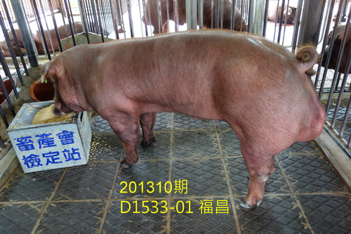 中央畜產會201310期D1533-01拍賣照片