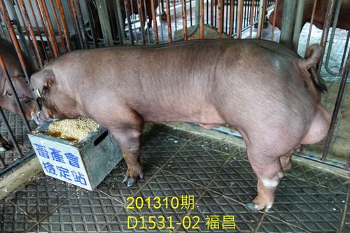 中央畜產會201310期D1531-02拍賣照片
