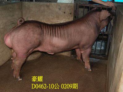 台灣動物科技研究所竹南檢定站10209期D0462-10拍賣相片