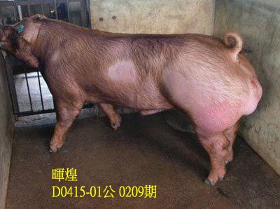 台灣動物科技研究所竹南檢定站10209期D0415-01拍賣相片