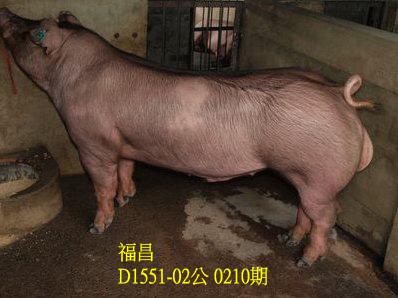 台灣動物科技研究所竹南檢定站10210期D1551-02拍賣相片