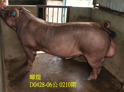 台灣動物科技研究所竹南檢定站10210期D0428-06拍賣相片