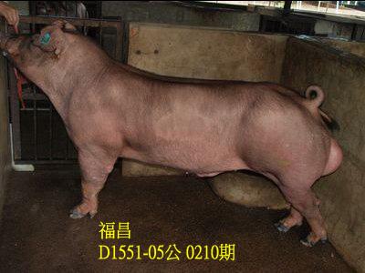 台灣動物科技研究所竹南檢定站10210期D1551-05拍賣相片