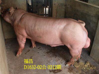 台灣動物科技研究所竹南檢定站10212期D1632-02拍賣相片