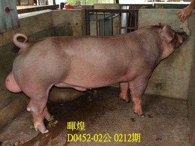 台灣動物科技研究所竹南檢定站10212期D0452-02拍賣相片