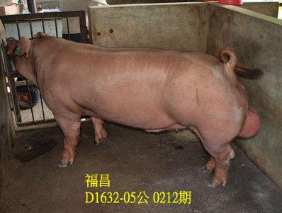 台灣動物科技研究所竹南檢定站10212期D1632-05拍賣相片